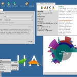 Haiku-Appearance-settings-and-system-information.jpg